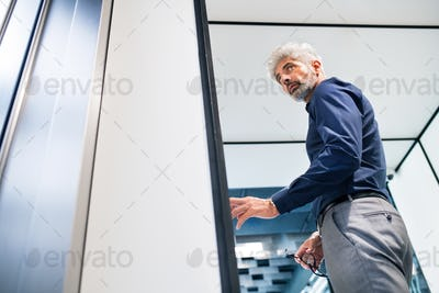 Mature businessman in the office standing.