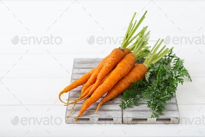 Bunch of fresh carrots with green leaves on  light  wooden background