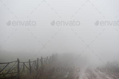 Uneven road, hedge, fog in the Armenian village