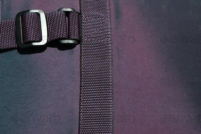 buckle on purple