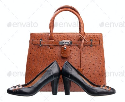 Pair of black women shoes and terracotta handbag over white