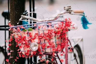 Close Up Of Basket And Hadlebar Of Female Bicycle Equipped Baske