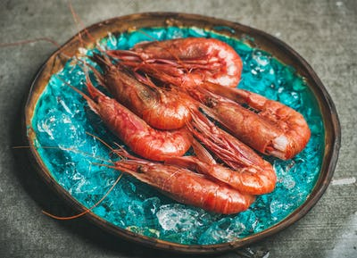Raw uncooked red shrimps on chipped ice, selective focus
