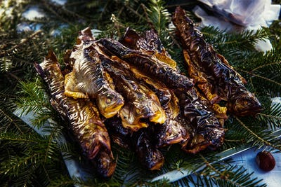 Smoked fish, trouts on pine branch in the market
