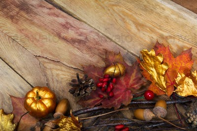 Thanksgiving golden pumpkin, acorn and oak leaves decor, copy sp
