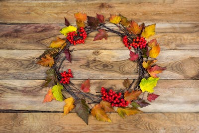 Thanksgiving wreath with rowan leaves and ripe berries, top view