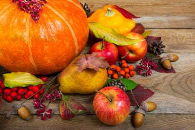 Thanksgiving or harvest background with pumpkin, apples, squash