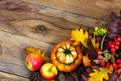 Fall background with ripe apples, decorative pumpkin, copy space