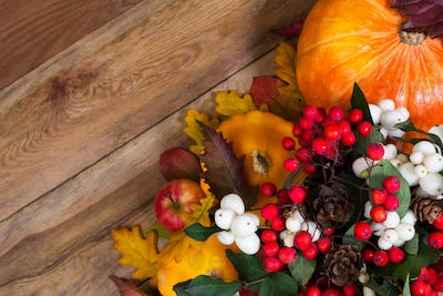 Thanksgiving background with ghostberry, rowan, pumpkin, copy sp