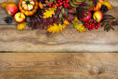 Fall background with red rowan and yellow oak leaves, copy space