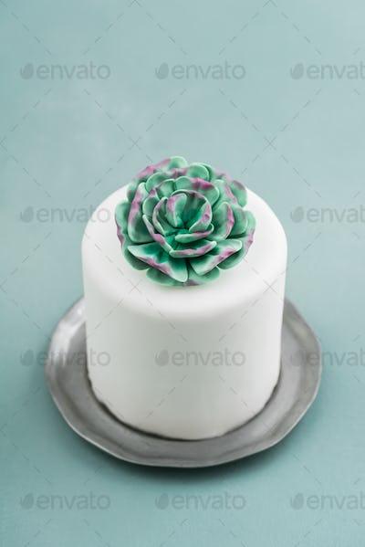 Mini succulent wedding cake