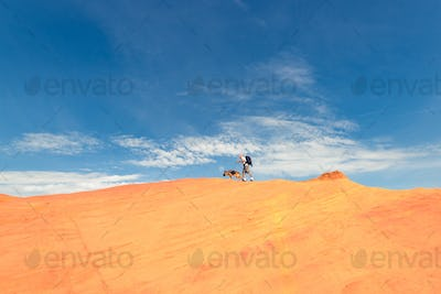 Man and dog walking on the edge of dune