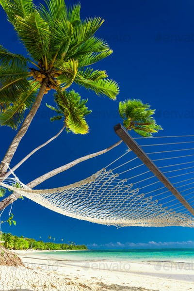 Empty hammock under palm trees on a beach of Fiji Islands
