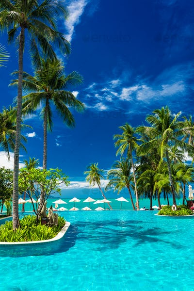 Large infinity swimming pool on the beach with palm trees and