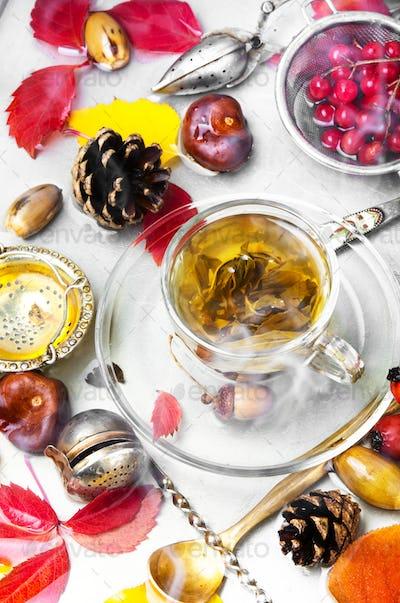 cup hot autumn tea