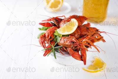 Boiled crayfish in the plate with beer