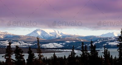 Pink winter clouds Lake Laberge Yukon landscape