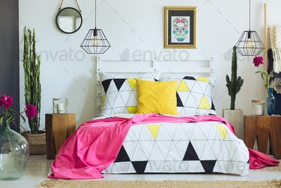 Unique geometric bedclothes and cactus
