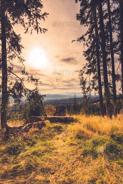 Autumn in high Tatra mountains,toned image
