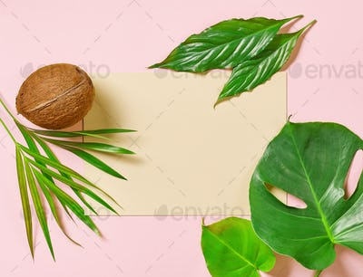 tropical leaves and coconut