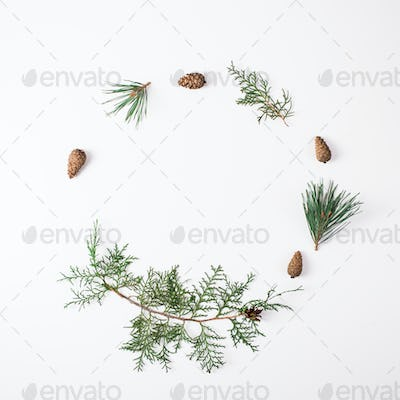 Pine branch with cone on a white background for Christmas decorations