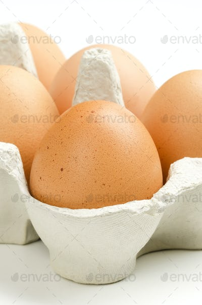 Chicken eggs in gray egg carton, front view