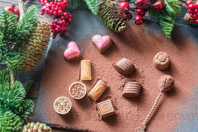 Chocolate candies with cocoa and Christmas tree branch