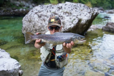 Fly fisherman with brown trout
