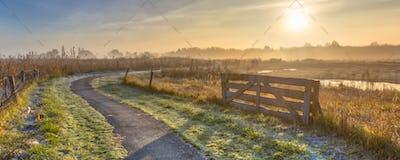 Track in misty agricultural landscape