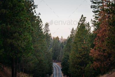 Scenic Route Yosemite
