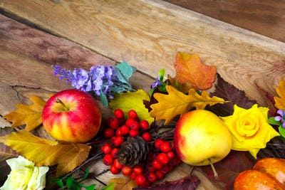 Thanksgiving background with apple, lilac flowers and rowan berr