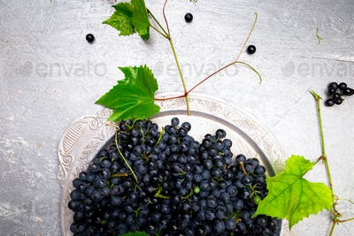 Red wine grapes in silver tray on grey background. Top view. Copy space.