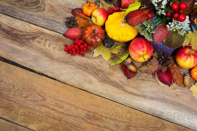 Thanksgiving background with white flowers, yellow squash, acorn