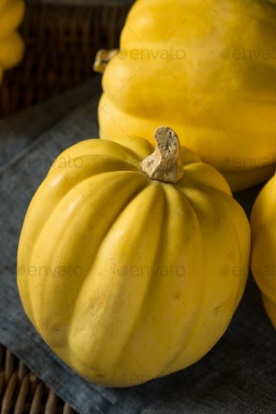 Raw Organic White Yellow Acorn Squash