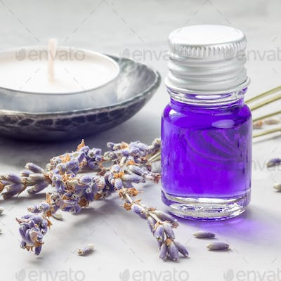 Lavender oil in glass bottle with lavender flowers on background, square format