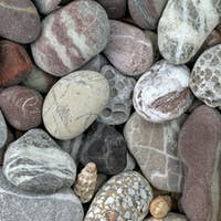 Pebbles in earth colors - stone pattern