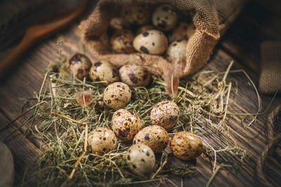 Some quail eggs