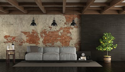 Dark living room in rustic style