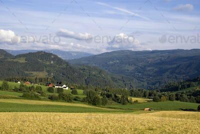 Farmland on a mountain slope in the norwegian valley Gudbrandsdalen