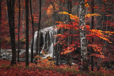 Beautiful waterfall with trees, red leaves, rocks and stones in