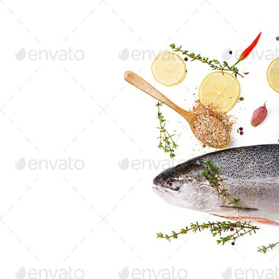 Fresh raw salmon red fish  isolated on a white background. Flat lay. Top view