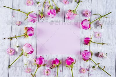 Frame of beautiful pink rose