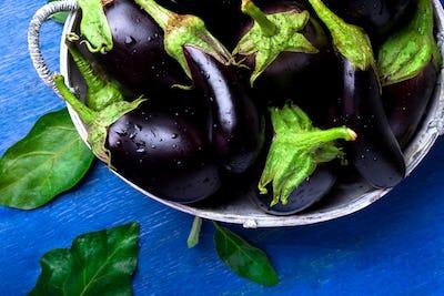 Fresh eggplant in grey basket