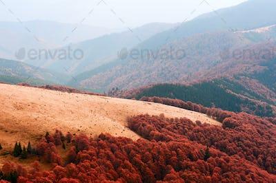Fantastic autumn landscape