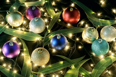 Christmas Baubles and Gum Tree Leaves