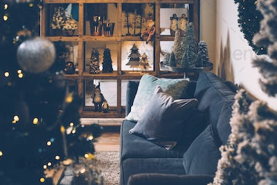 Interior view of decorated living room