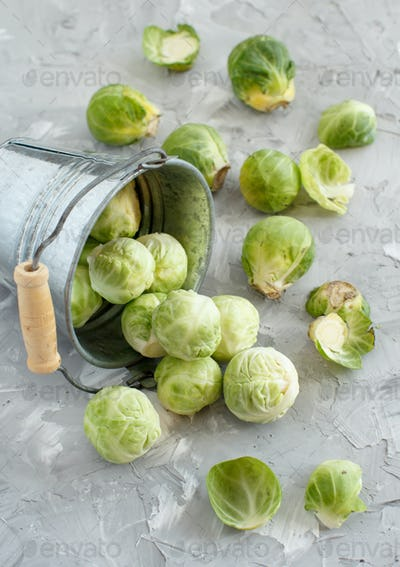 Brussels sprouts  in a bucket