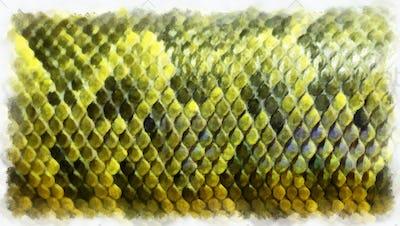 Boa skin pattern