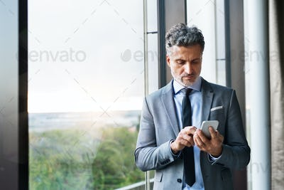 Mature businessman with smartphone in a hotel.