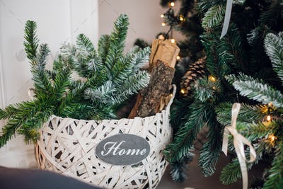 Christmas basket under the tree with fir branches